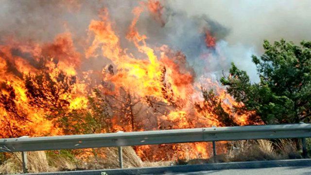 Belen Belediye Başkanı'ndan Hatay yangınıyla ilgili sabotaj iddiası