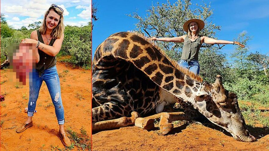 Zürafayı vurup kalbiyle poz verdi